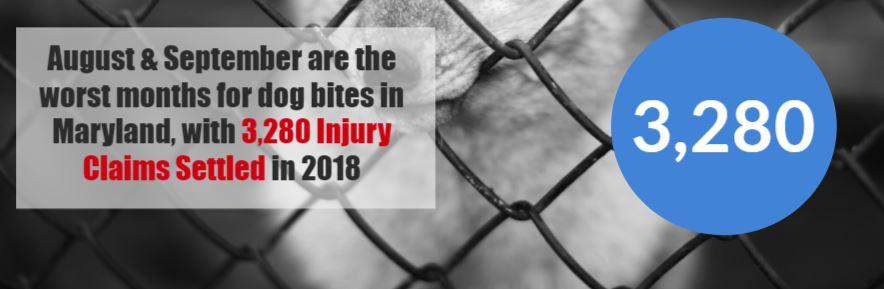 maryland dog bite statistics