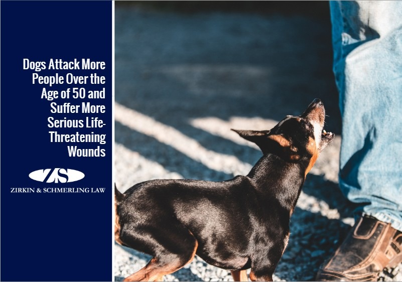 Dogs Attack More People Over the Age of 50 and Suffer More Serious Life-Threatening Wounds