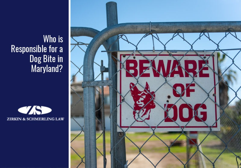 Who is Responsible for a Dog Bite in Maryland?