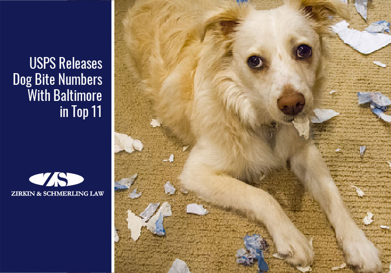 USPS Releases Dog Bite Numbers With Baltimore in Top 11